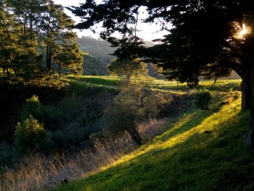 Hiking in SF