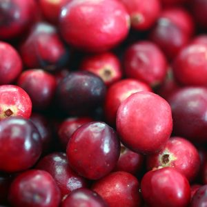 Fall Flavors: Cranberries! (+ Simple Passive Practice)