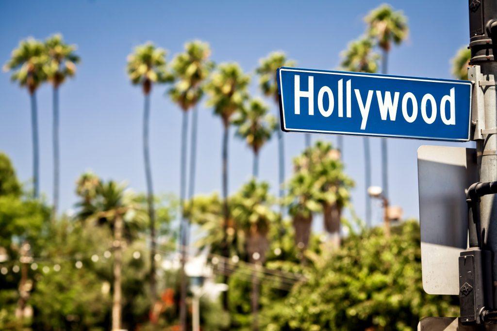 California Hollywood Palm Tree