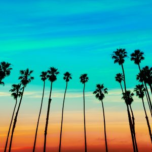 """""""Don't Call it Frisco"""": Words to Avoid if You're a Real California English Speaker"""