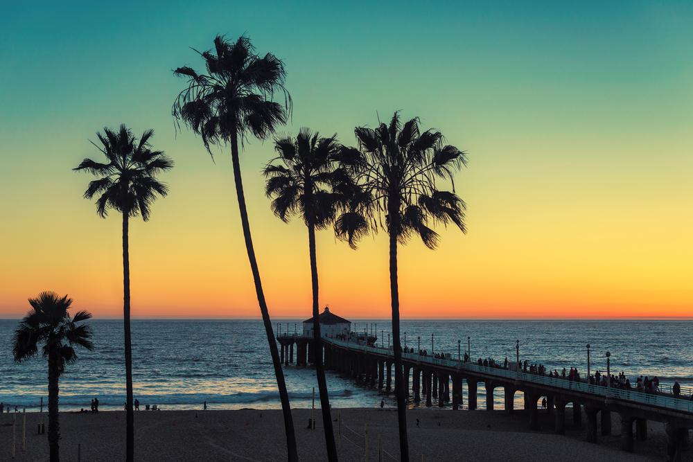 Manhattan.Beach.Palm.Tree.Sunset.Pier.California.Ocean